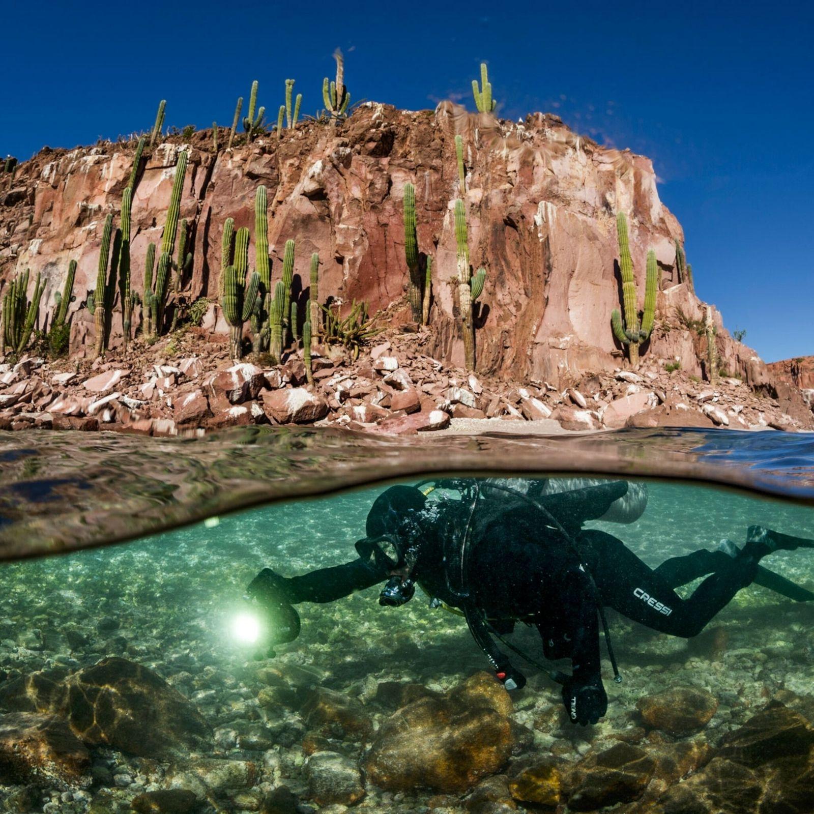 Un buzo nada cerca de la Isla Espíritu Santo en el golfo de California
