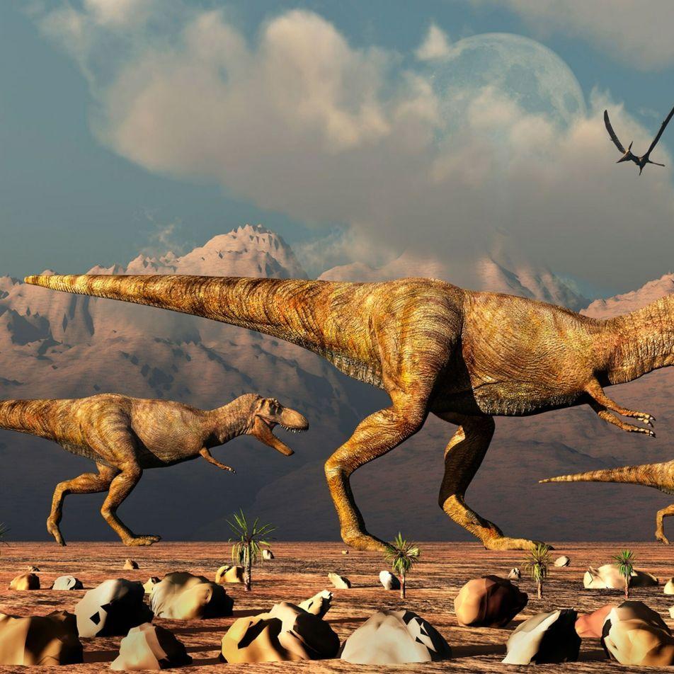 Un nuevo estudio revela que hubo miles de millones de T. rex en el mundo