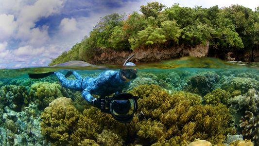 El explorador español Enric Sala, entre los premiados de 2021 de la National Geographic Society