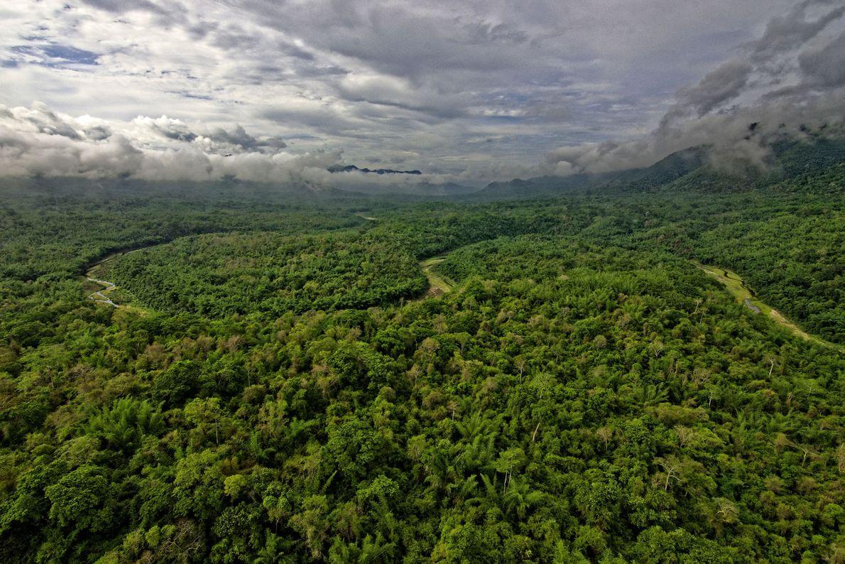 Santuarios de fauna de Thungyai Huai Kha Khaeng