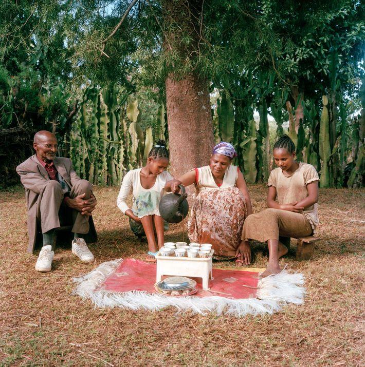 Bekele Erango, Birtukan y sus hijos disfrutan sentados de su magnífico café, un arábica envejecido cuyo ...