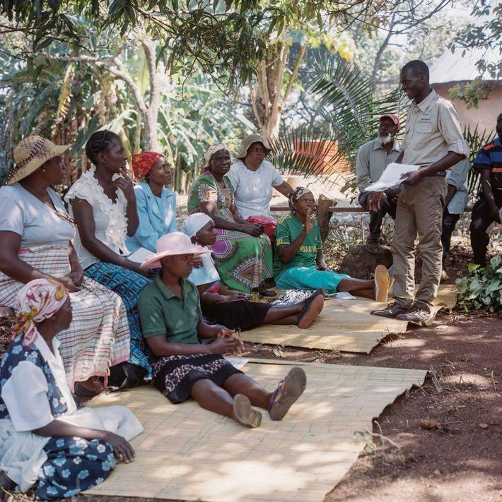 La formación en plantación, poda y cosecha de la academia la imparten agrónomos AAA y formadores ...