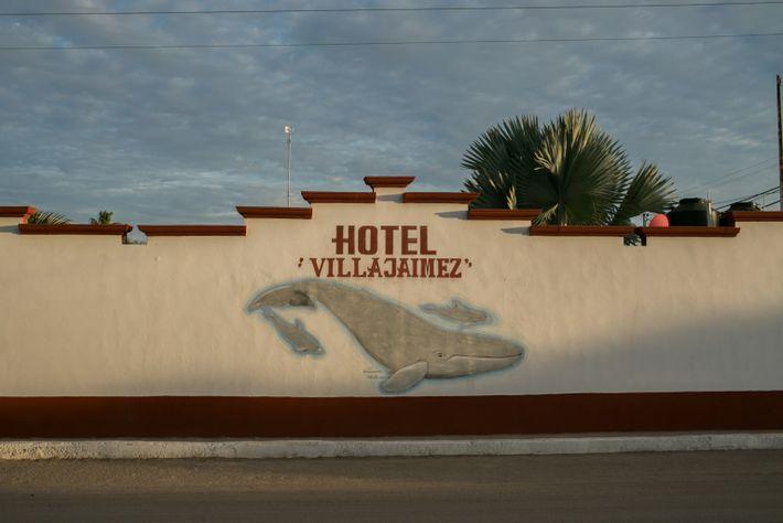 Un mural con ballenas grises pintado en la pared de un hotel