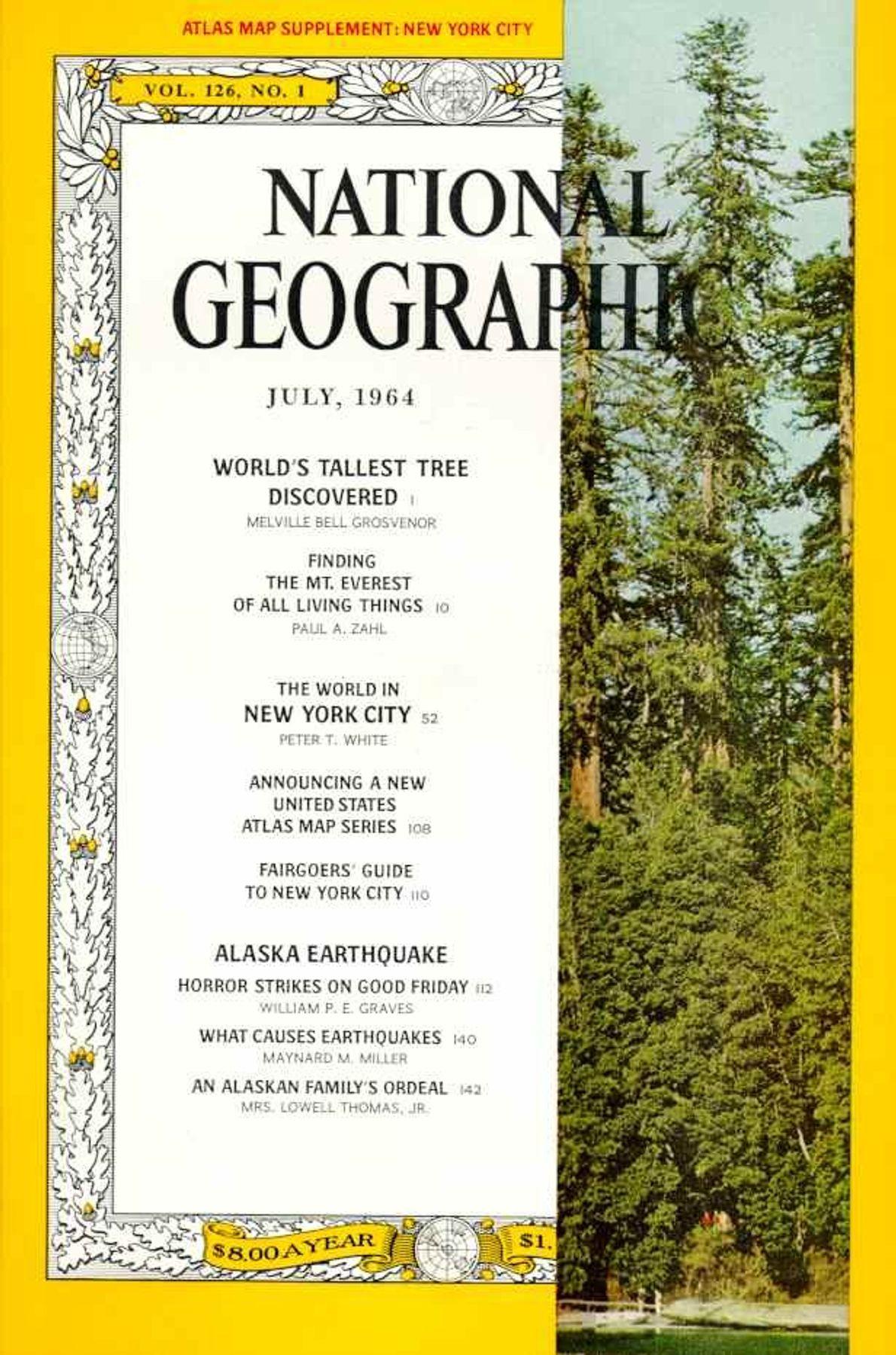 Julio 1964: Las secuoyas: el árbol más alto descubierto