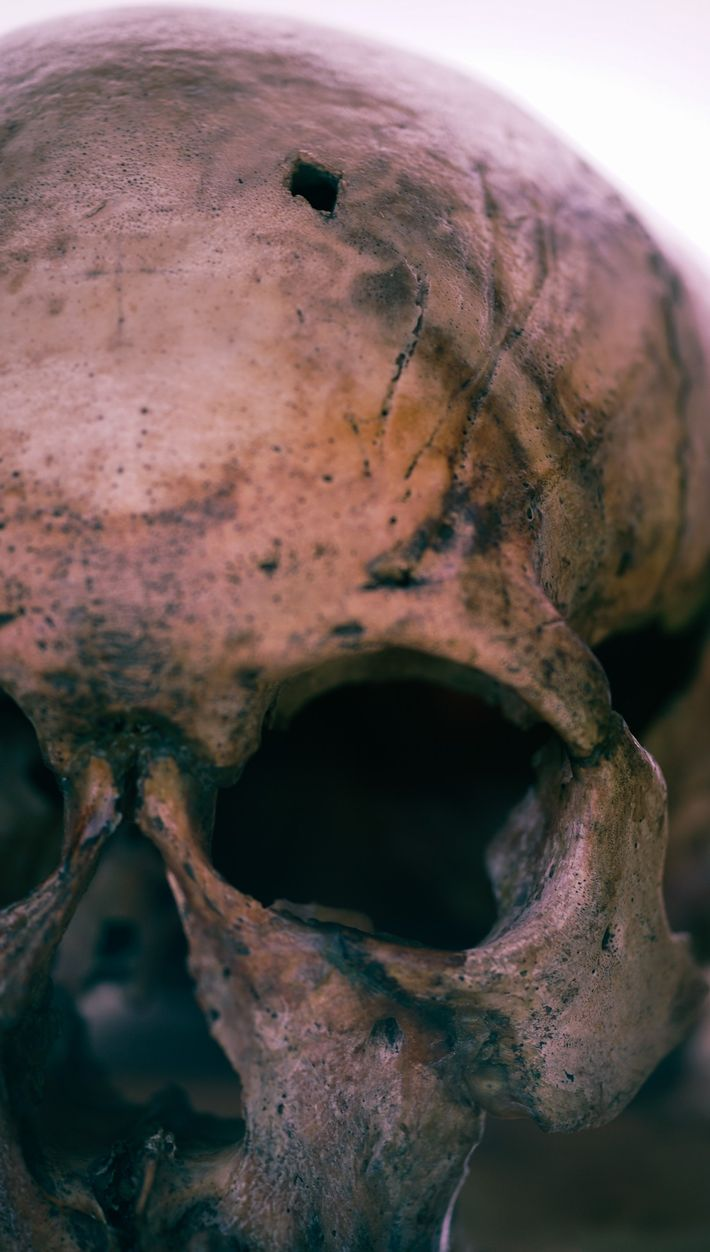Cráneo con herida de flecha
