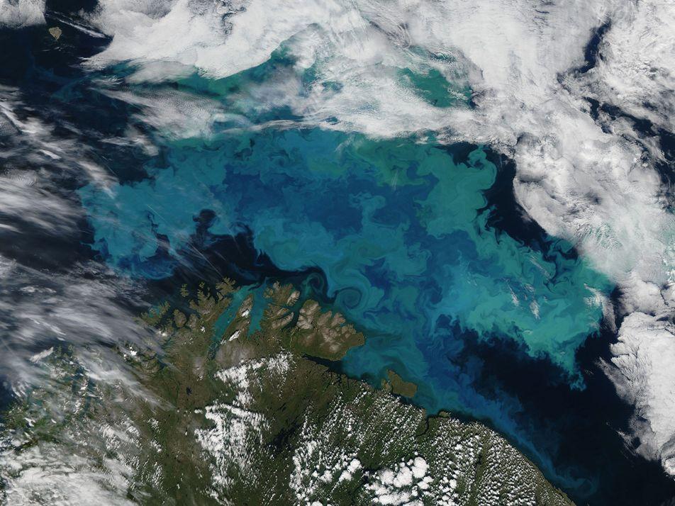 El cambio climático cambiará el color de los océanos
