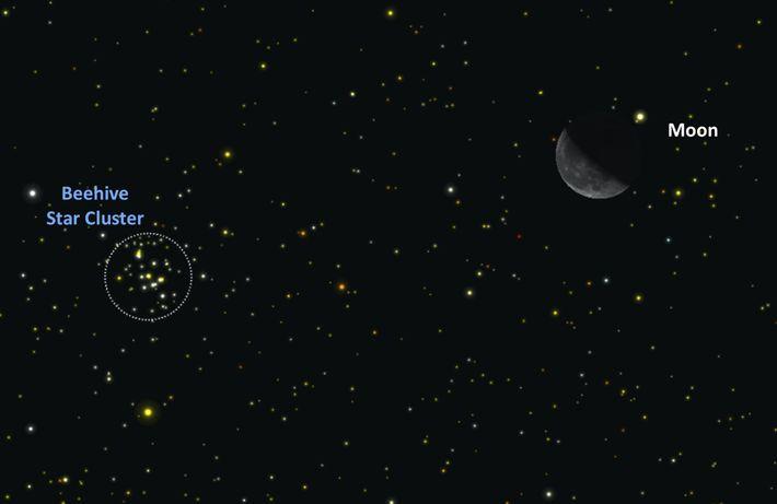 Cúmulo Abierto M44