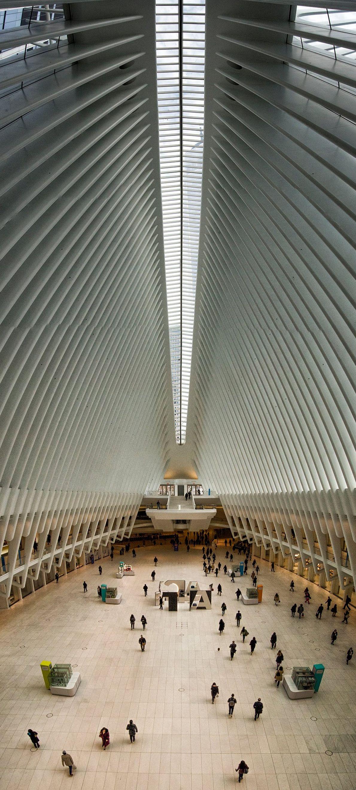 «De Nueva York sencillamente aprendí a hacer algo extraordinario».  Santiago Calatrava.