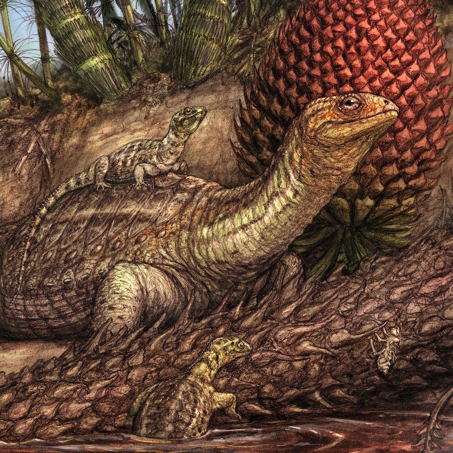 Los miembros de la especie de tortugas sin caparazón Pappochelys rosinae exploran un lago del Triásico en una ilustración.
