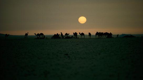 Beduinos en Arabia Saudí