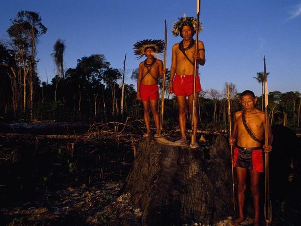 Indios Suruí
