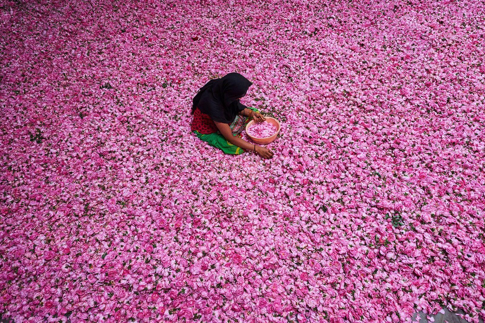 Esta ciudad antigua es la capital de los perfumes de la India