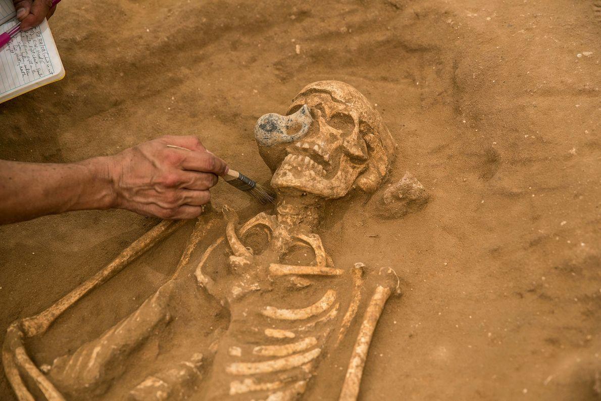 Esqueleto filisteo