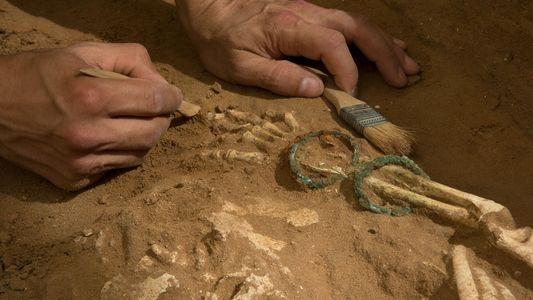 El ADN antiguo podría revelar el origen de los filisteos