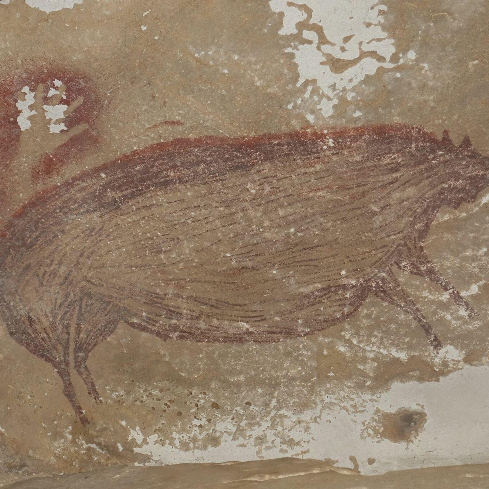 Pintura rupestre de un cerdo verrugoso