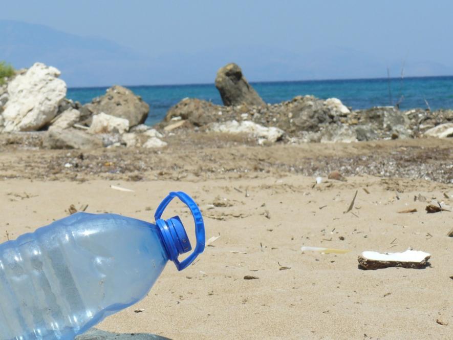 Enzimas y gusanos que comen plástico, pequeños aliados contra el gran desafío del siglo XXI