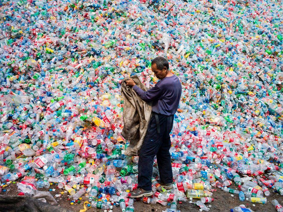 La ONU advierte: el cambio transformador es un imperativo frente a la crisis ambiental