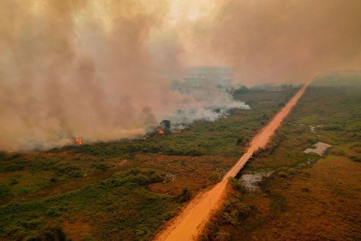 Incendios junto a la carretera Transpantaneira