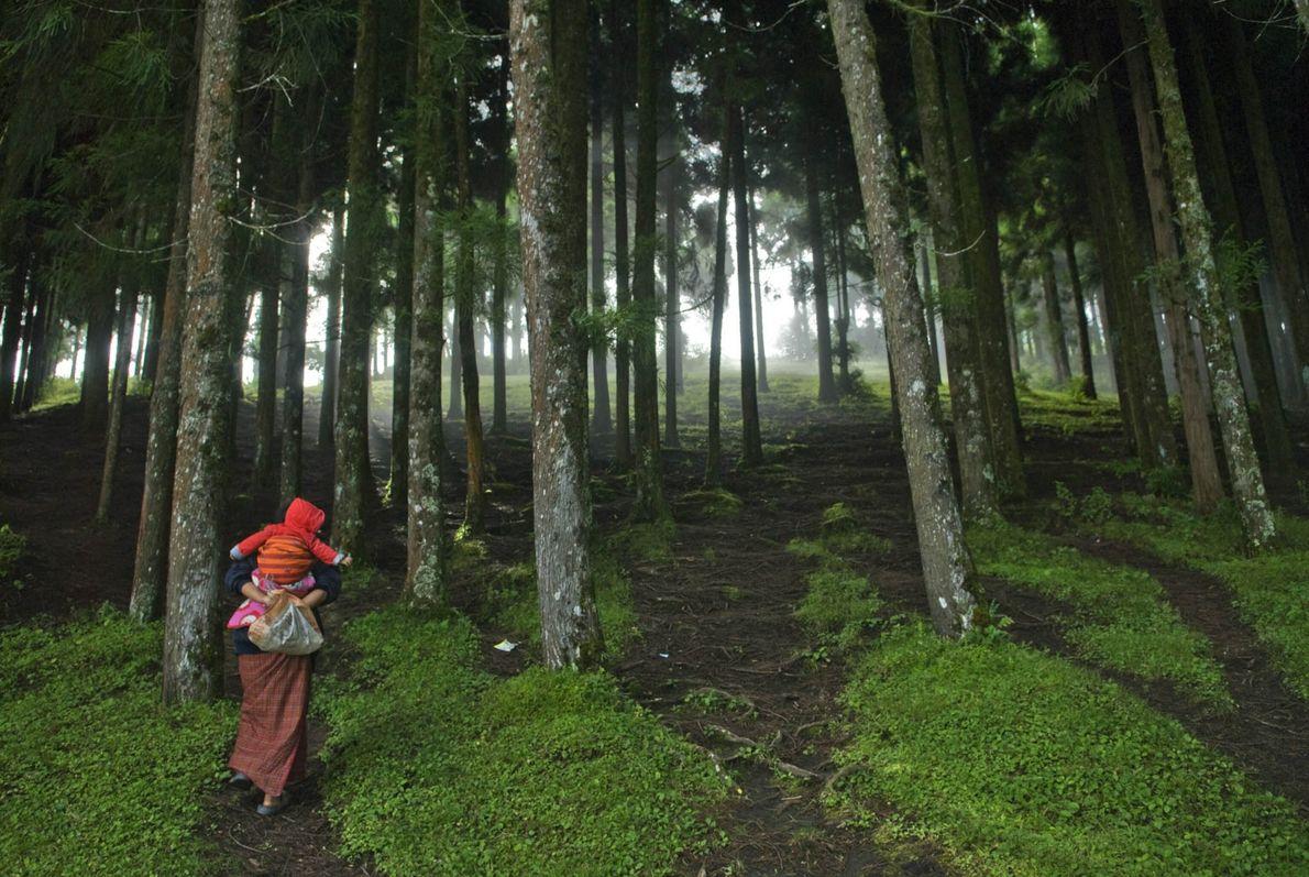 Una madre lleva a su bebé por un bosquepara visitar a su familia