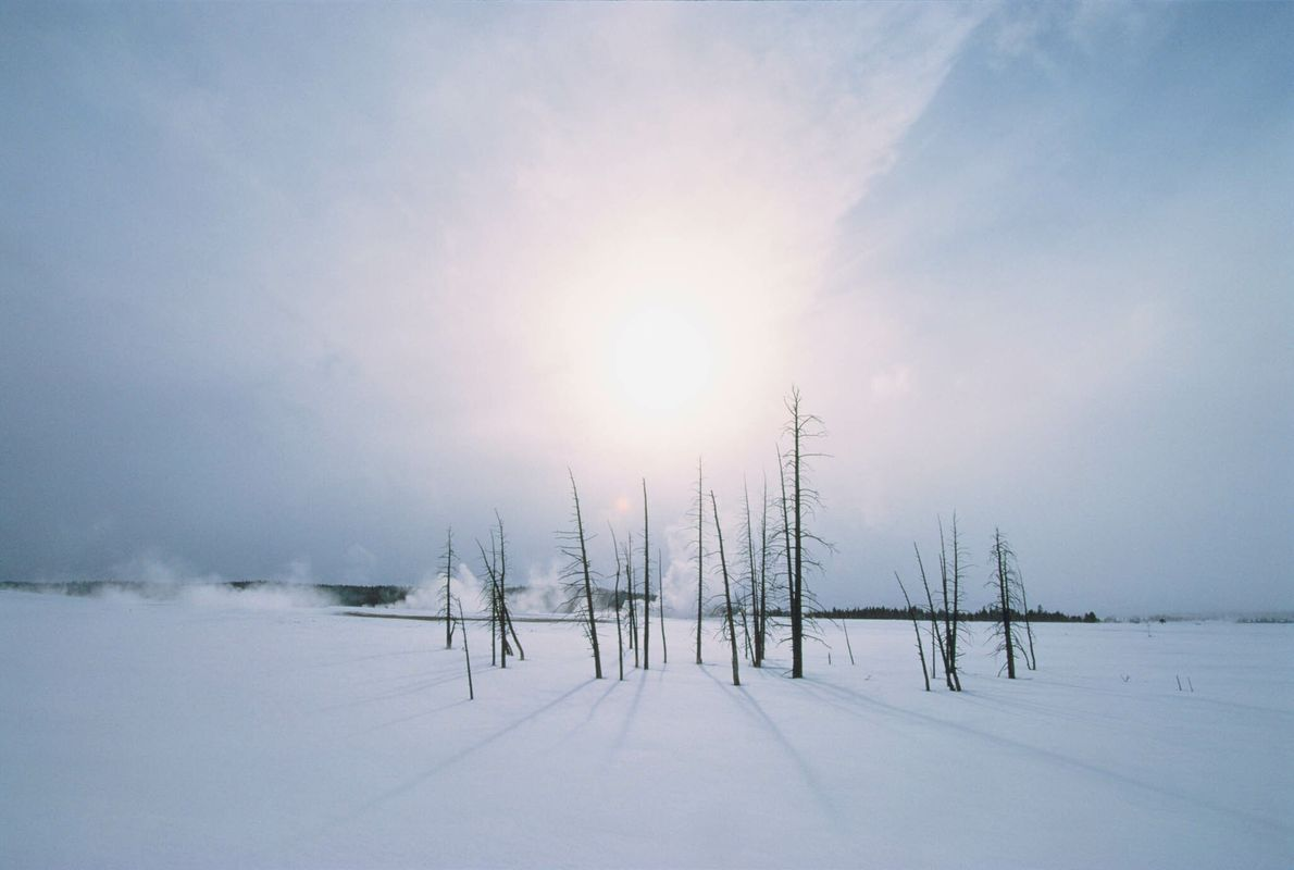 Sol invernal