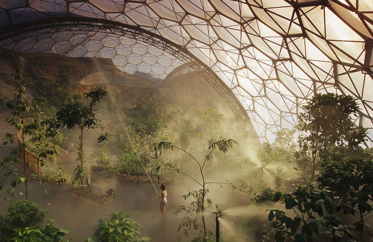 Imagen de un trabajador nebulizando las plantas del Eden Project, Inglaterra