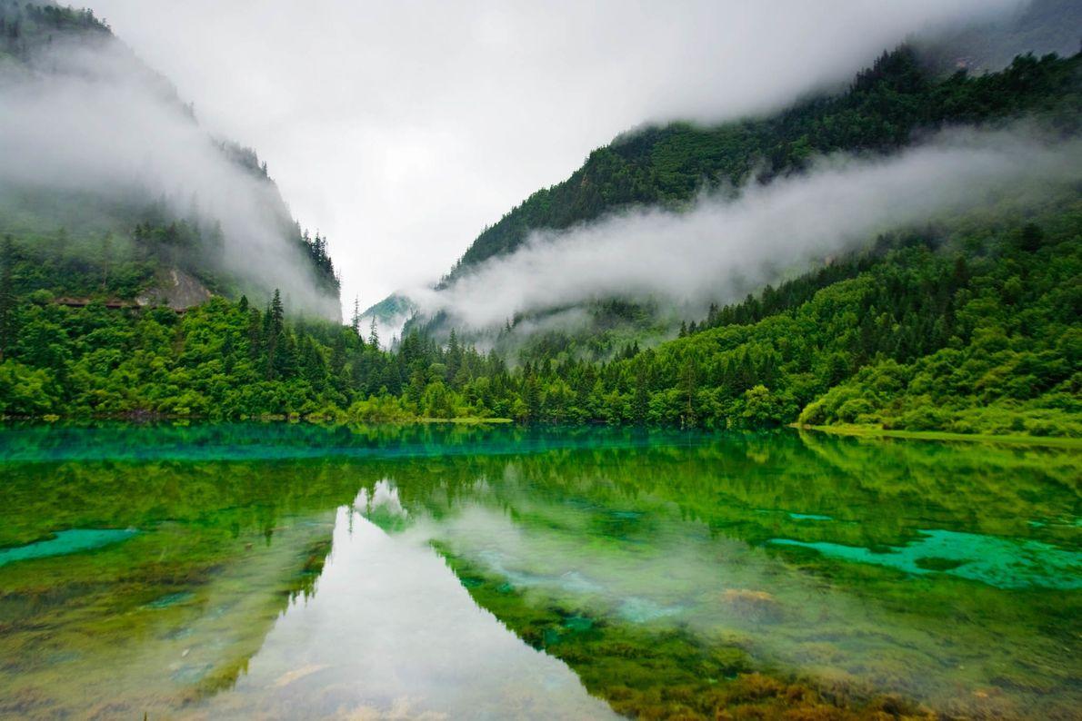 Reserva Natural de Jiuzhaigou