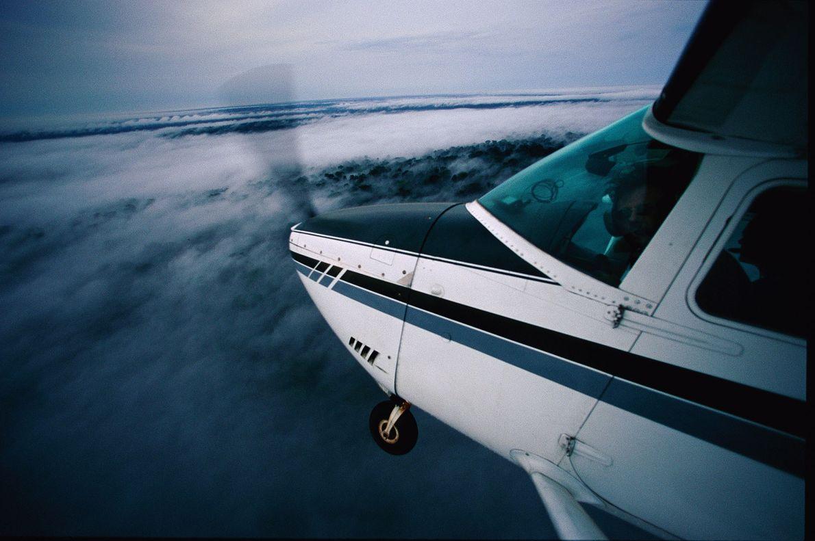 Al vuelo