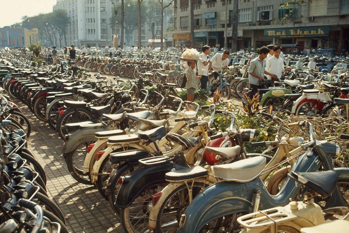 Hileras de bicicletas