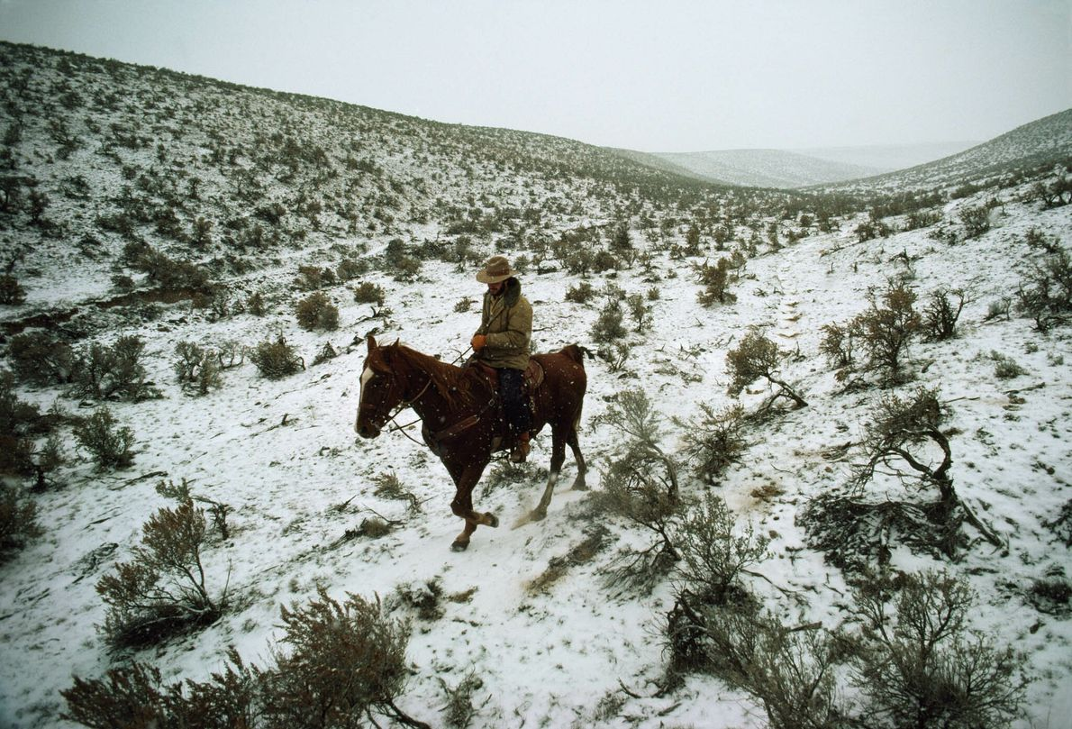 Un hombrecabalga por las Rattlesnake Hills