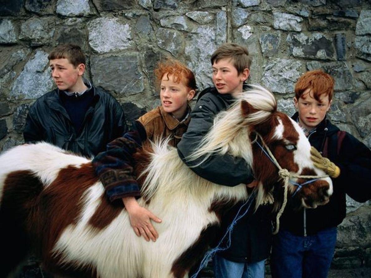 Niño y pony