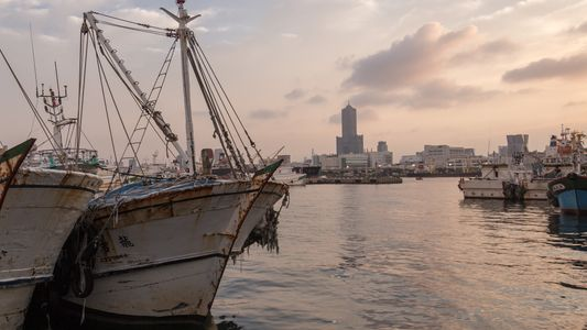 Delitos contra la fauna y violaciones de los derechos humanos: la lacra de los buques de ...