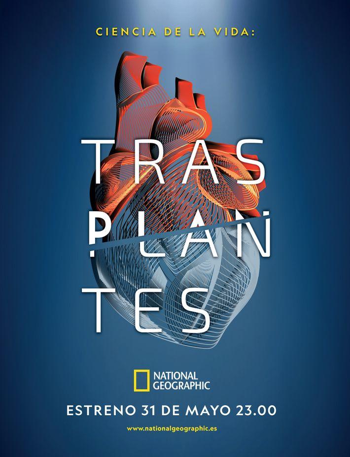 España ha sido líder mundial en donación y trasplante de órganos durante 28 años consecutivos, alcanzando ...