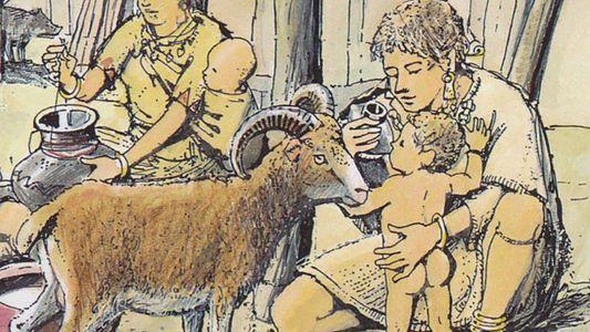 ¿Qué contenían los biberones prehistóricos?