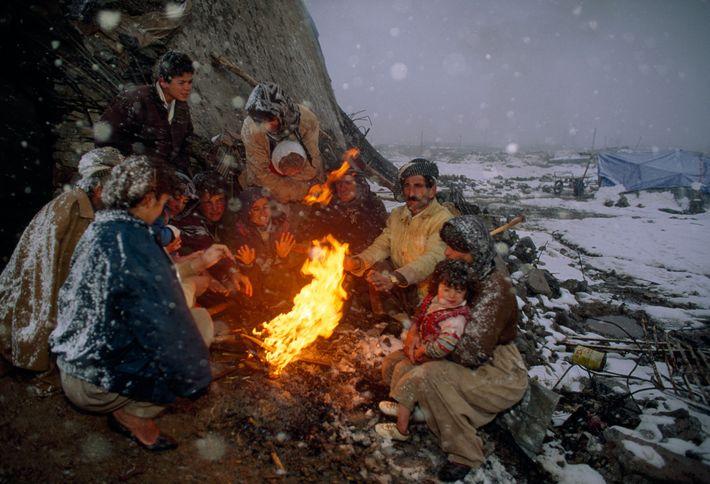 Familia kurda