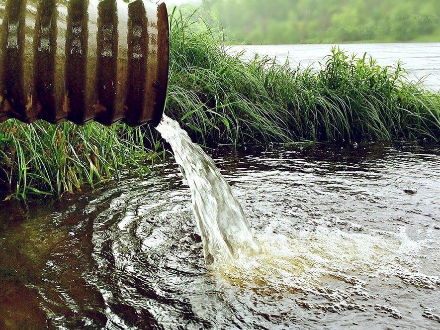Los vertidos de aguas residuales han sido el motivo que ha adjudicado más banderas negras en ...