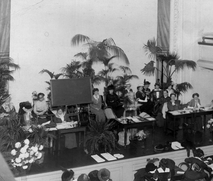 Convención de la Asociación Nacional Estadounidense por el Sufragio de la Mujer