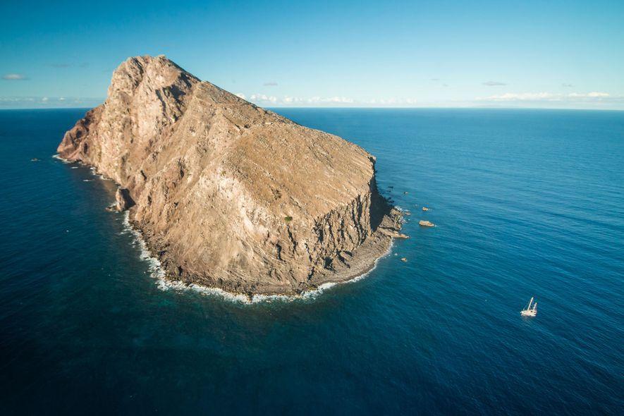 Las especies invasoras gobernaron esta isla durante más de un siglo, pero ahora ha vuelto a ...