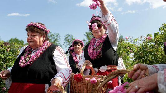 El festival de la Rosa, una tradición búlgara llena de color