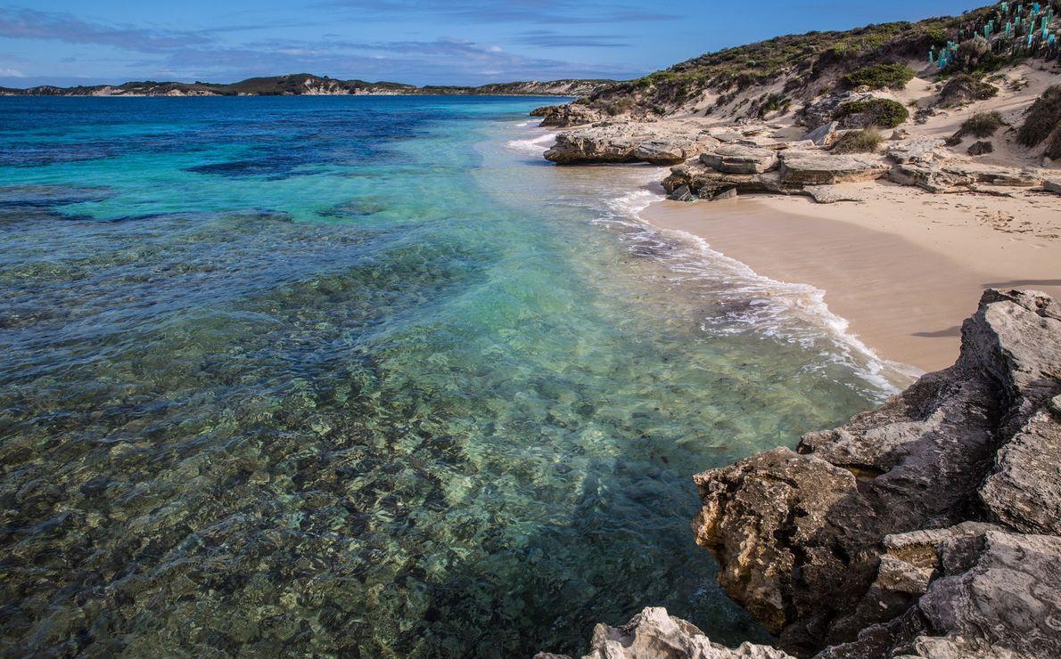 Discovery Rottnest Island, Australia