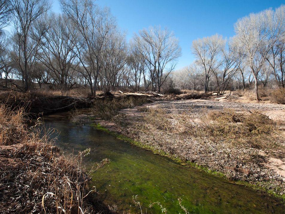 La sobreexplotación de los acuíferos está acabando con nuestros ríos