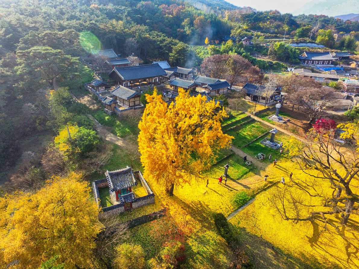 Seowon – Academias neoconfucianas coreanas