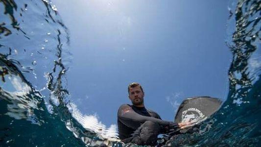 Chris Hemsworth: La playa de los tiburones, estreno el 3 de julio a las 18:00h en ...