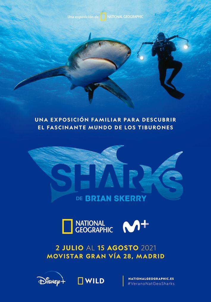 La exposición SHARKS de Brian Skerry estará disponible del 2 de julio al 15 de agosto en ...