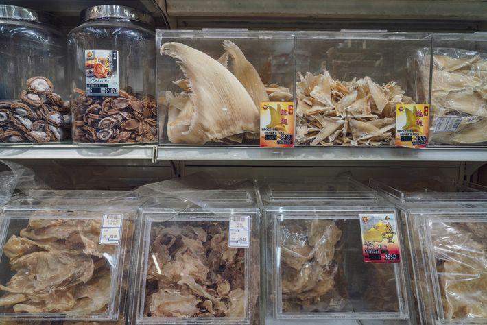 Aletas de tiburón a la venta en Singapur