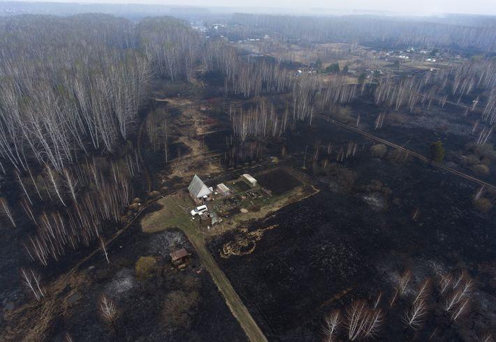 Incendio en el sur de Siberia