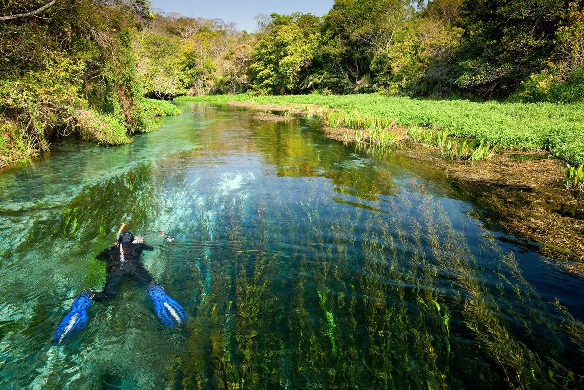 Bucea por el río Sucuri
