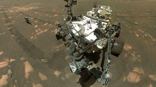 Róver marciano 'Perseverance'