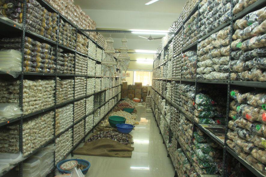 Las caracolas procesadas en un almacén de la India se empaquetan y se preparan para su ...