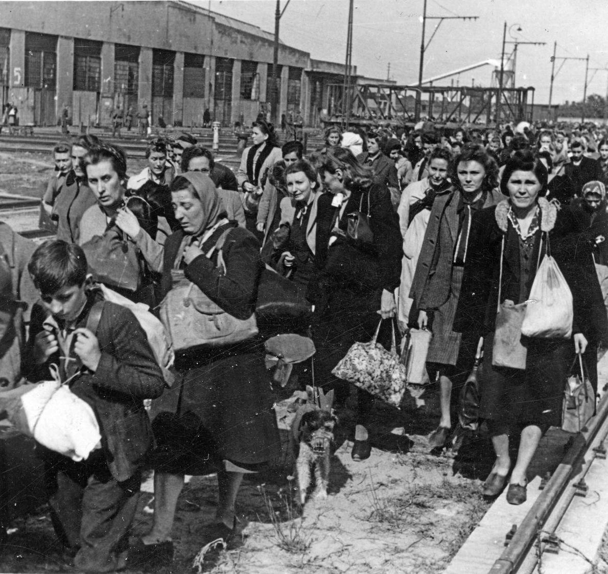 Polacos trasladados a campos de concentración