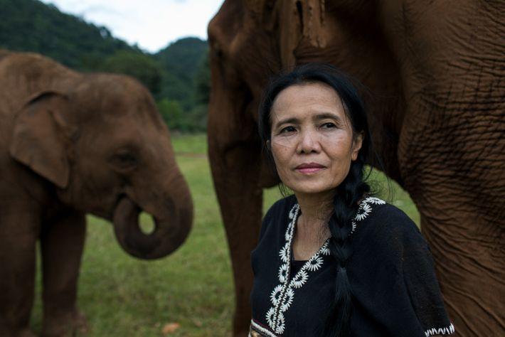 Lek Saengduean Chailert, fundadora y directora del Elephant Nature Park